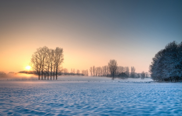 Картинка зима, поле, небо, солнце, снег, деревья