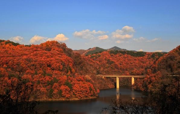 Картинка осень, лес, небо, горы, мост, река