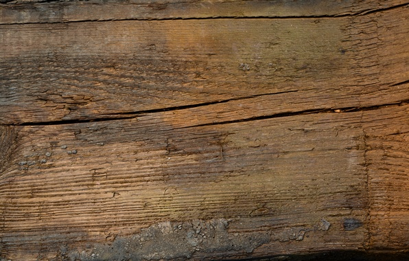 Картинка wood, brown, pattern, close up
