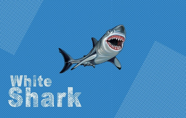 Картинка white, blue, shark, pop art