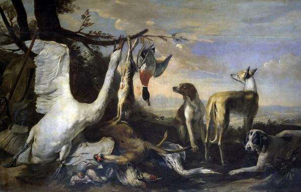 Картинка птицы, картина, Собаки, охота, жанровая, Сторожащие Дичь, Питер Боэль
