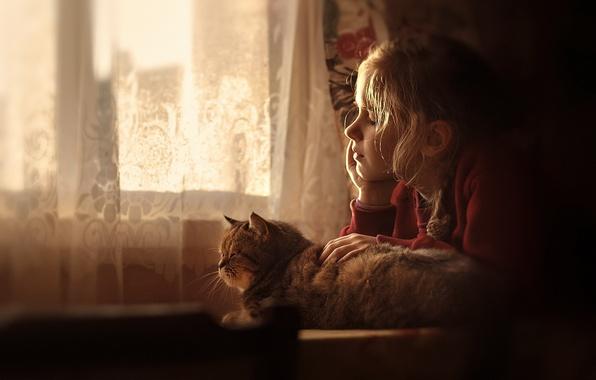 Фото обои девочка, кошка, дом