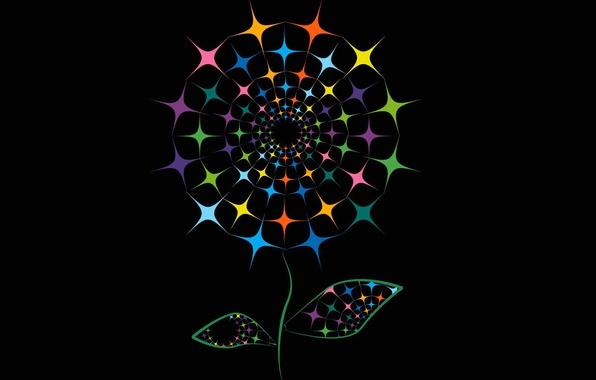 Картинка цветок, линии, фон, краски