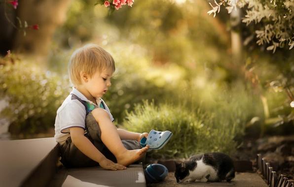 Картинка мальчик, котёнок, друзья