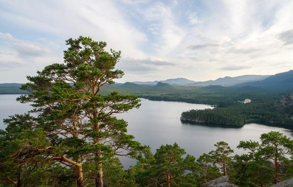 Картинка деревья, озеро, сосны, Казахстан, Боровое озёро