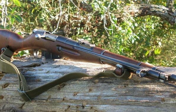 Картинка оружие, винтовка, 1945, Мосина, M44, Ижевск