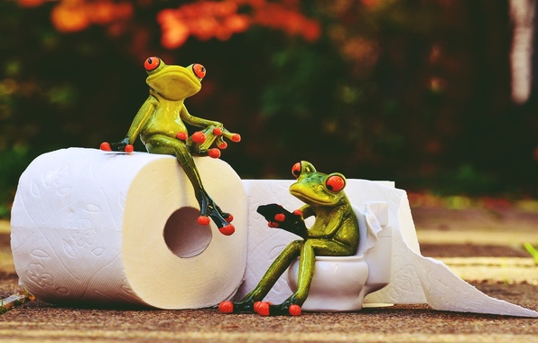 Фото обои vintage, rendering, frog, paper, toilet, style, animals