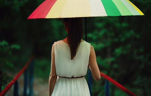 Картинка девушка, мост, зонтик, фон, дождь, обои, настроения, размытие, зонт, брюнетка, ограждение, wallpaper, girl, погода, rain, …