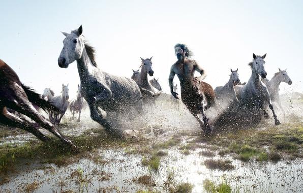 Обои картинки фото лошади, кентавр, бег