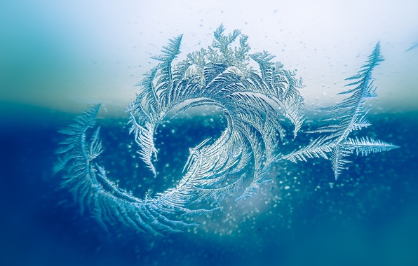 Фото обои зима, стекло, узор, мороз