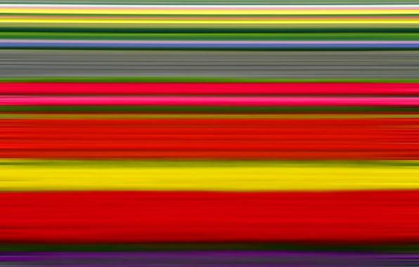 Картинка поле, цветы, краски, тюльпаны, плантация