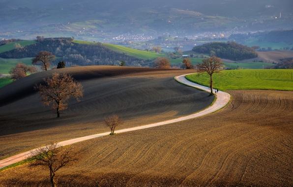 Дорога поле пейзаж природа обои