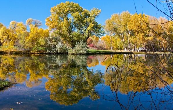 Картинка осень, небо, деревья, озеро, пруд, парк, отражение