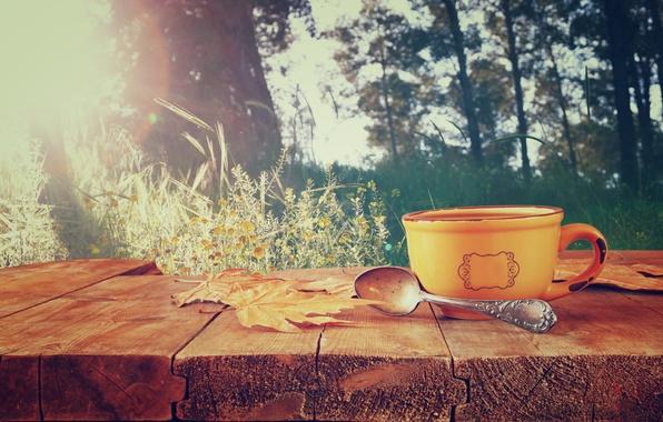 Картинка осень, листья, кофе, чашка, hot, autumn, leaves, cup, coffee
