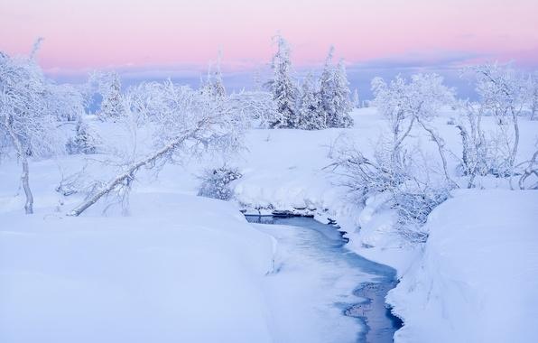 Картинка зима, снег, деревья, ручей