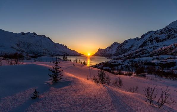 Картинка свет, пейзаж, природа, утро