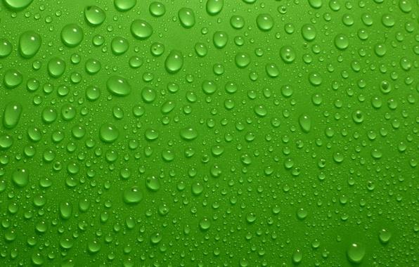 картинки на рабочий стол зеленый фон