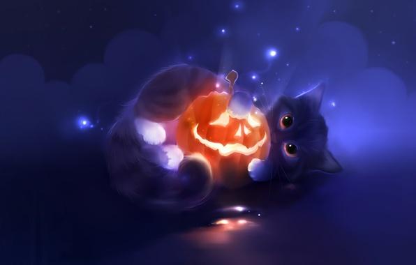 Картинка взгляд, котенок, рисунок, художник, Halloween, тыква, Хэллоуин, apofiss, pumpkin, светильник Джека