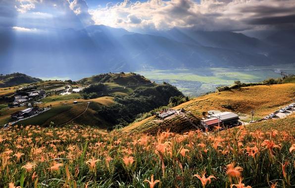 Картинка поле, небо, облака, лучи, свет, деревья, цветы, горы, природа, дом, холмы, долина, Taiwan