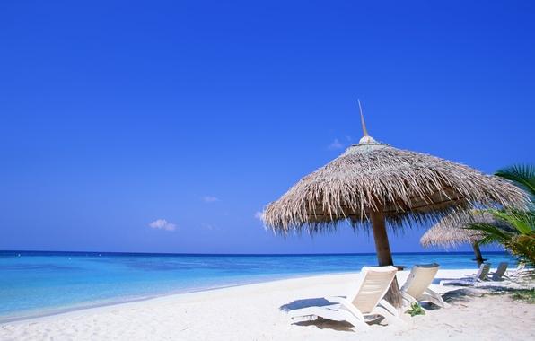 Картинка песок, море, пляж, лето, небо, вода, пальмы, океан, отдых, берег, пейзажи, жара, ocean, water, шезлонги, …
