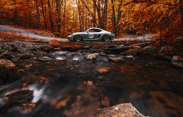 Картинка Porsche, Cayman, Orange, Side, View, Stance, Forest, Works