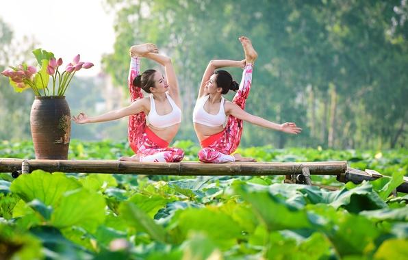 Картинка лето, природа, девушки, настроение, гимнастика, йога, ножки, азиатки