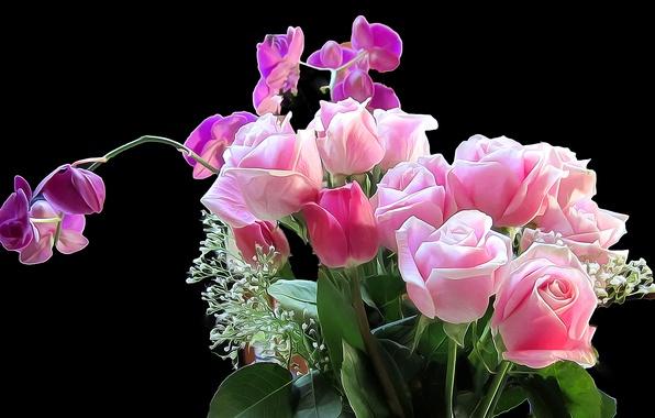 Картинка цветы, фон, роза, букет, ирис