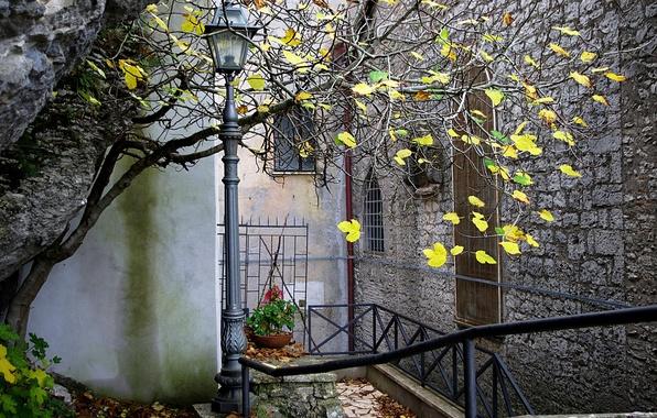 Картинка осень, город, дом, дерево, фонарь, дворик