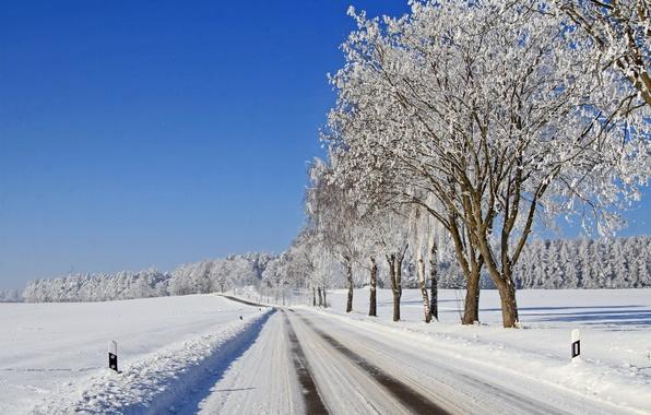 Картинка зима, иней, дорога, лес, небо, снег, деревья, мороз