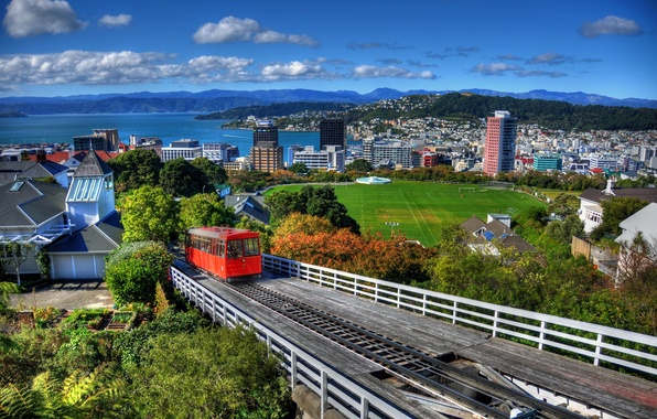 Картинка лес, горы, город, дома, Новая Зеландия, панорама, and, стадион, вода., New Zeal, Wellington