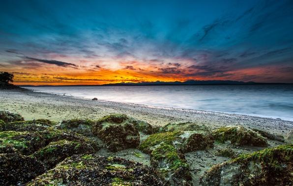 Картинка море, пляж, небо, облака, закат, тучи, камни, берег, мох, вечер, залив, Вашингтон, Сиэтл, США