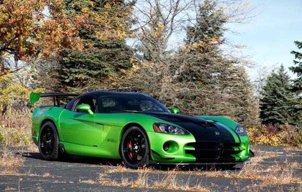 Картинка осень, деревья, green, зелёный, Dodge, Viper, додж, вайпер, вид спереди, trees, ACR Snakeskin Edition
