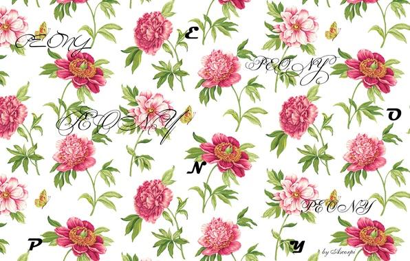 Картинка цветы, природа, буквы, надписи, пион, peony