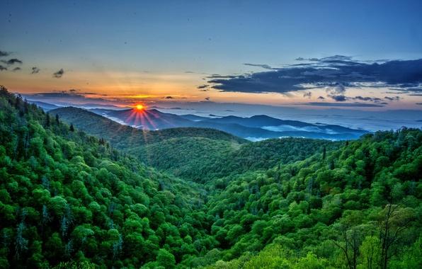 Картинка лес, небо, солнце, облака, лучи, горы, рассвет