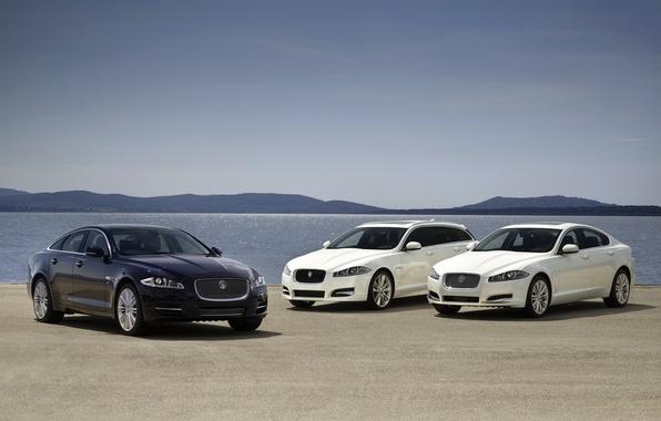 Картинка белый, небо, вода, синий, Jaguar, горизонт, Ягуар, седан, передок, универсал, ИксЭф, ИксДжей