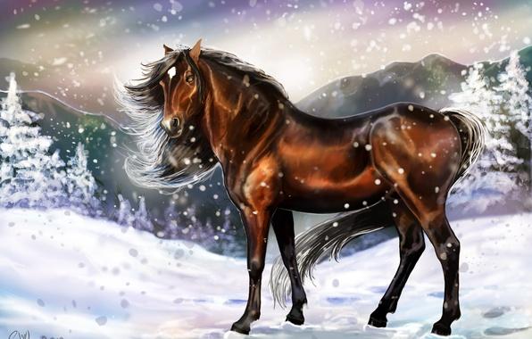 Картинка холод, зима, взгляд, снег, следы, животное, лошадь, арт, грива, живопись