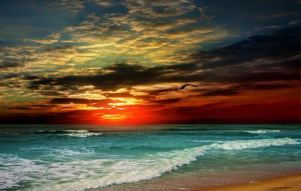 Картинка песок, море, пляж, закат, берег, beach, sea, sunset, sand, shore, paradise, tropical