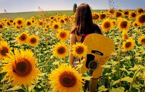 Картинка лето, девушка, подсолнухи, природа, музыка, гитара