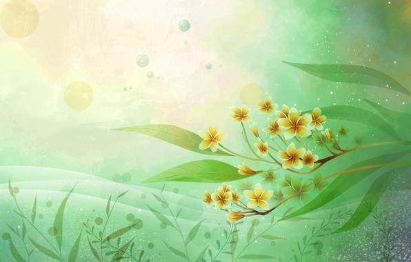Картинка листья, цветы, вектор, текстура, открытка