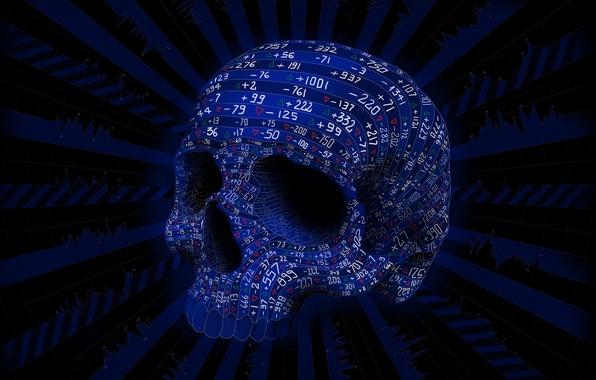 Картинка цвета, линии, череп, вектор, цифры, числа, Matei Apostolescu, колебания