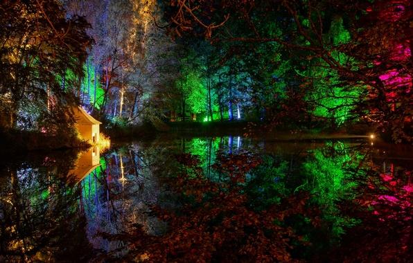 Картинка деревья, ночь, огни, пруд, парк, домик