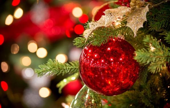 Картинка зима, ветки, красный, огни, игрушка, ель, шарик, Новый Год, Рождество, ёлка, Christmas, праздники, боке, New …