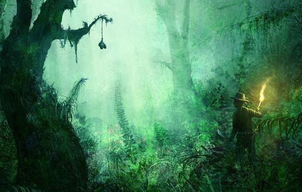 Картинка трава, деревья, зеленый, путешественник, факел