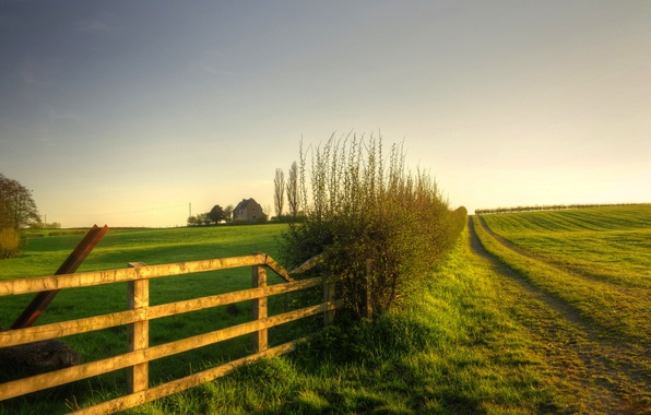 Картинка зелень, поле, небо, трава, пейзаж, природа, дом, фон, widescreen, обои, забор, растения, ограда, ворота, луг, …