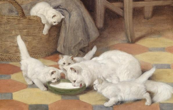 Картинка кошка, картина, семья, арт, котята, белая, пушистая, Mother and Kittens Drinking Milk, Arthur Heyer