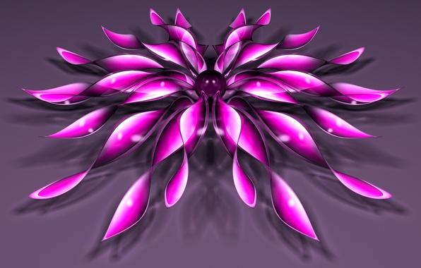 Картинка цветок, фон, шарик, лепестки