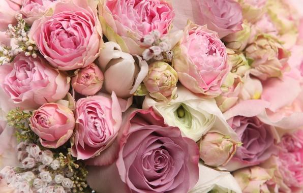 Картинка цветы, романтика, розы, букет, rose, flower, i love you, красивые, flowers, for you, beautiful, pretty, …