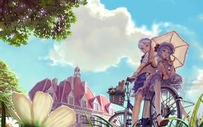 Обои лето, велосипед, девушки