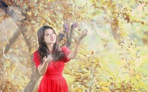 Картинка девушка, бабочки, азиатка