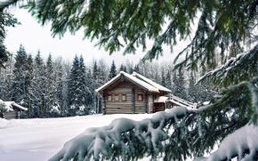 Картинка зима, снег, деревья, ветки, дом, лапы, ели, хвоя